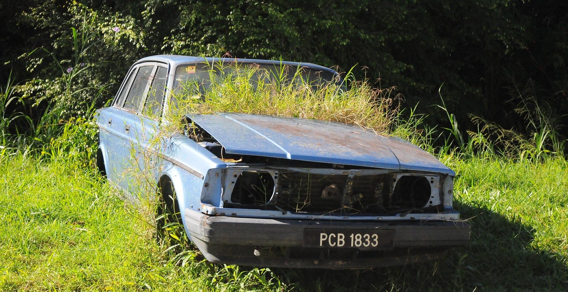 Prime de l'État à la conversion : Vieille voiture envahie par la nature